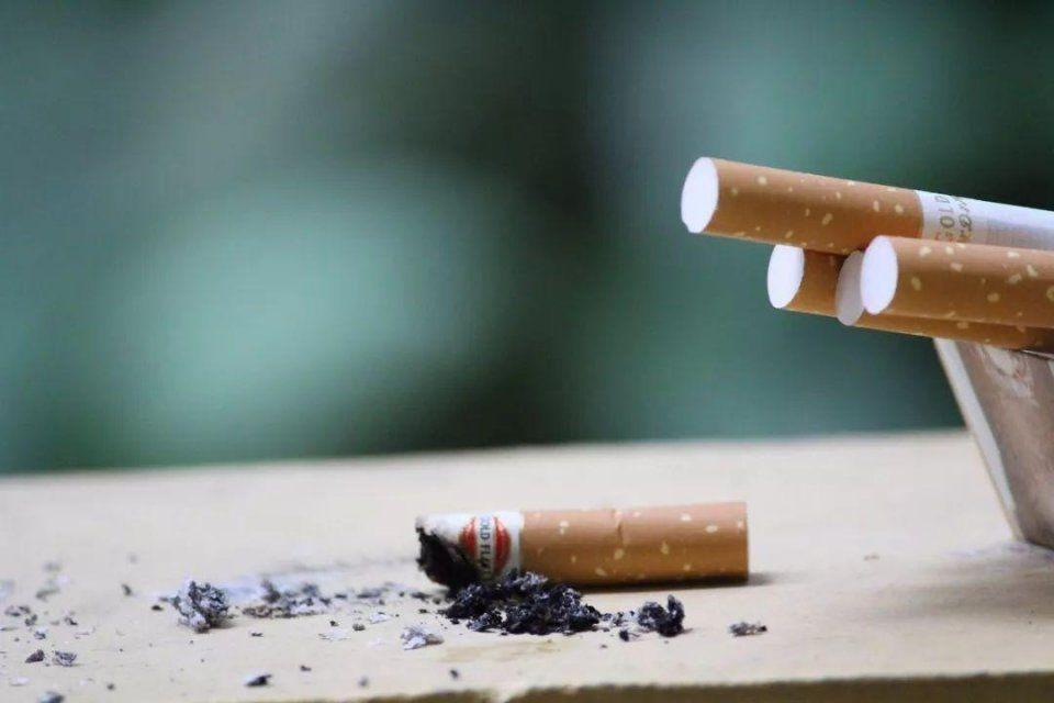 雪茄烟和香烟有什么区别